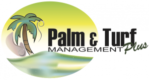 Palm & Turf Management
